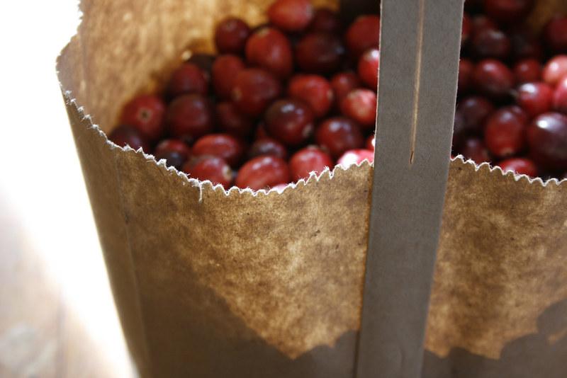 cranberry bag