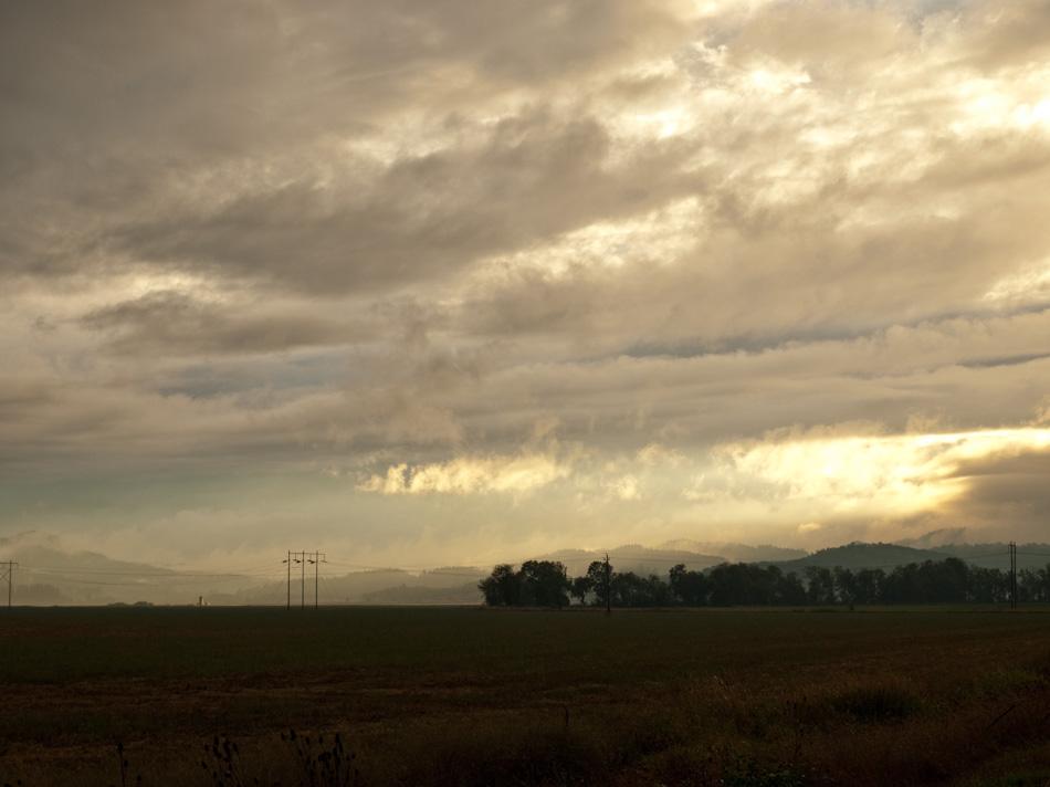 Ricketts Road Landscape