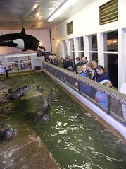 fundraiser at the aquarium
