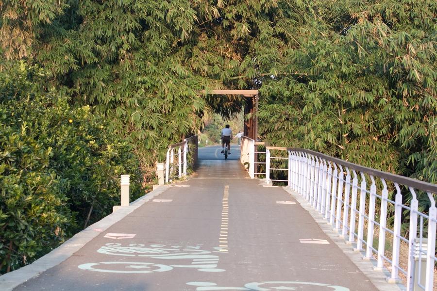 20110205_17_Bike way_10