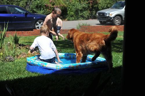 br pool2