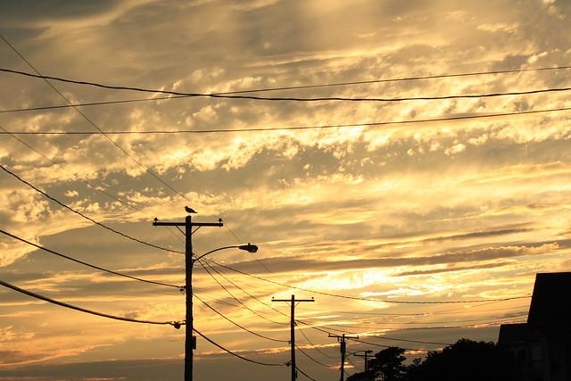 Sunset on Hills Beach Rd.