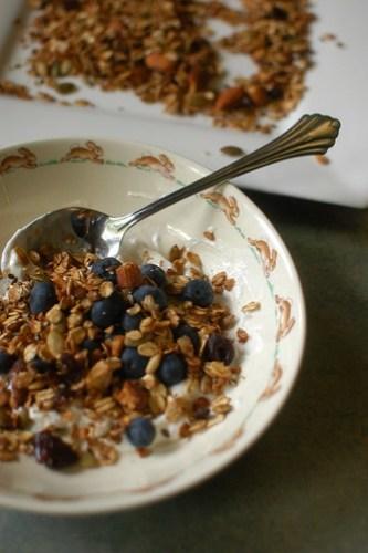 yogurt with blueberries and homemade granola