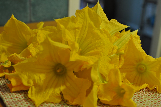 Another angle of the squash blossoms