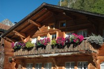 Swiss scenery & houses 004