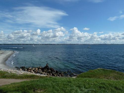 対岸はスウェーデン