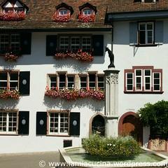 CH-4051 Basel Bergwanderung 16_2010 08 01_8554