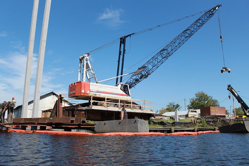Kayaking - Pasquotank River - Charles Creek Crane