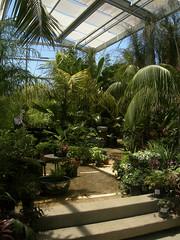 20100703_garden_floragrubb15