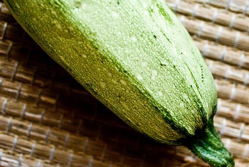 zucchini #5