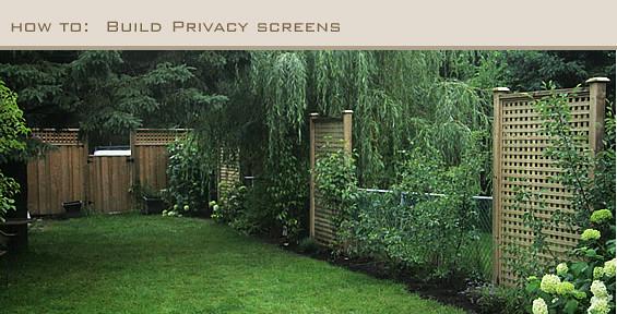 Sabrina's Garden: Use Trellis For Screening