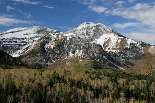 Photo taken along the Alpine Loop, Fall 2009