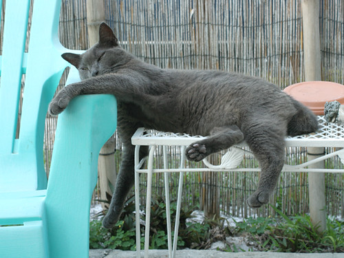 Smokey-lounging