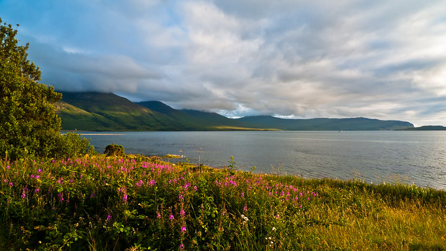 Killiechronan - view over Loch na Keal
