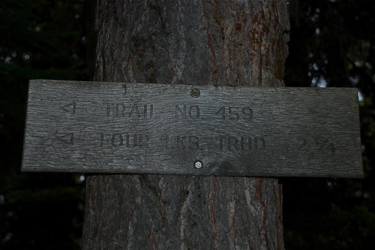 Along Cabin Lake trail