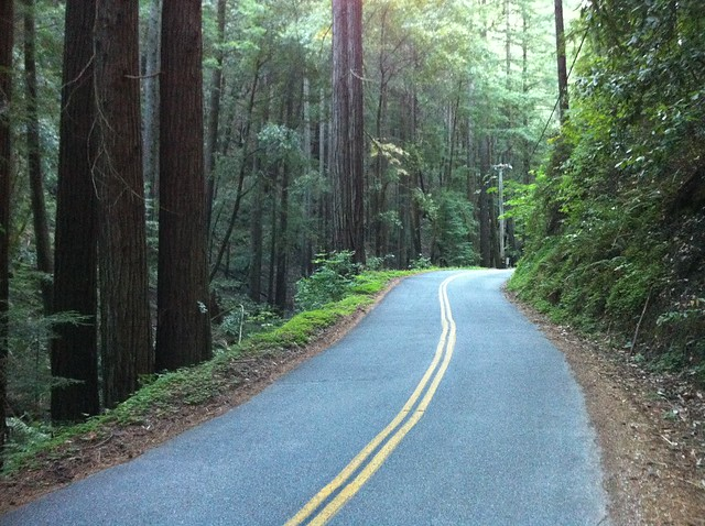 A better way to ride in Santa Cruz