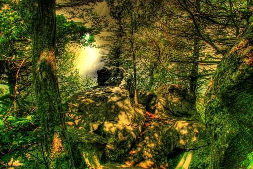 Path through the Boulders