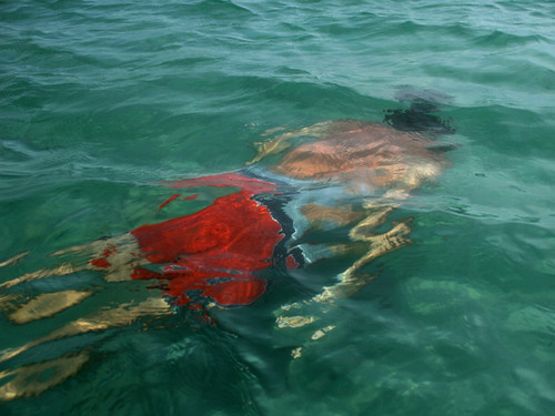 AJ-Swimming