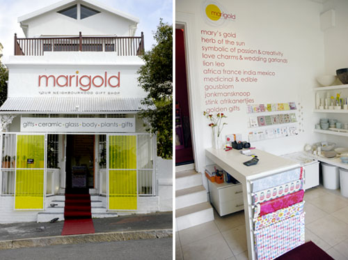 Marigold, Cape Town