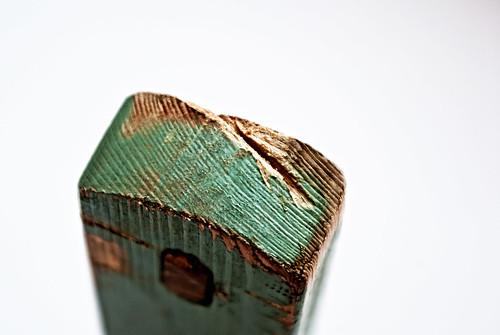 DSC0357https://graftio.wordpress.com/