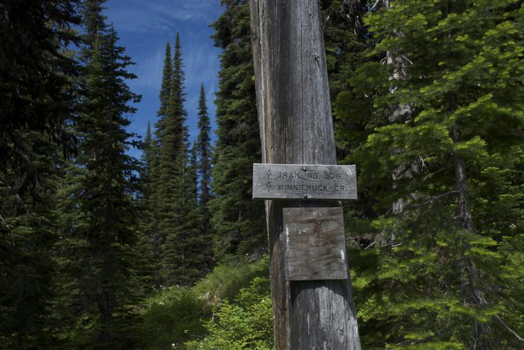 On Cabin Lake Trail