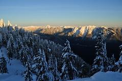 Mt Strachan, 31 Dec 2010