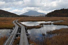 Oze Marsh and Mt Hiuchigatake