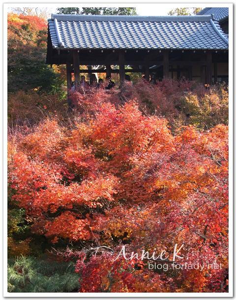 京都_東福寺4