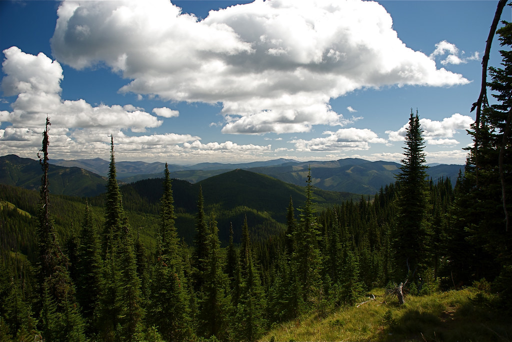 From Mt Silcox trail