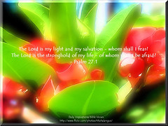 Psalm 27:1 (N.I.V.)