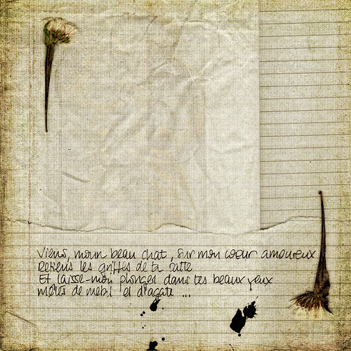 letters to Baudelaire (I)