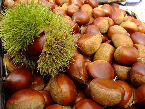 many chestnuts