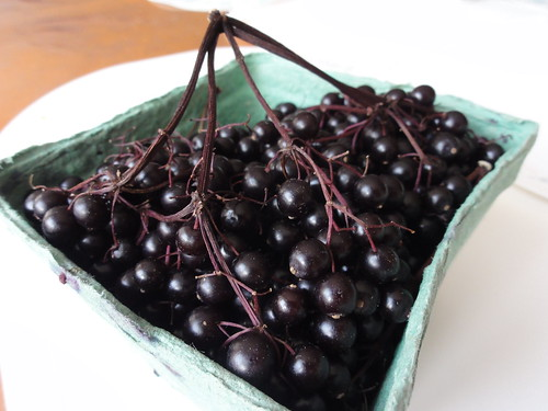 Elderberries from St. Lawrence Market
