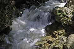 White rapids near Cheile Rasnoavei