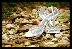 Ritz & Fab Wedding