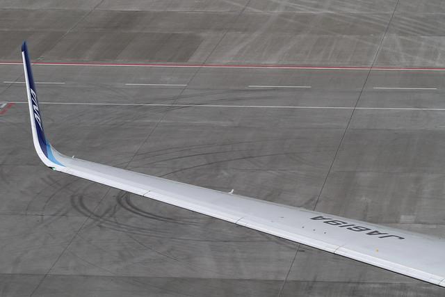 ANA B767-300ER(JA619A)