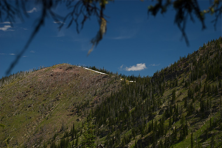 Mountainside above Image Lake