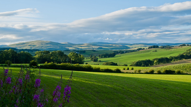 View back to Ochil Hills from Cleigh Hills