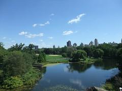 New York - Central Park (26)