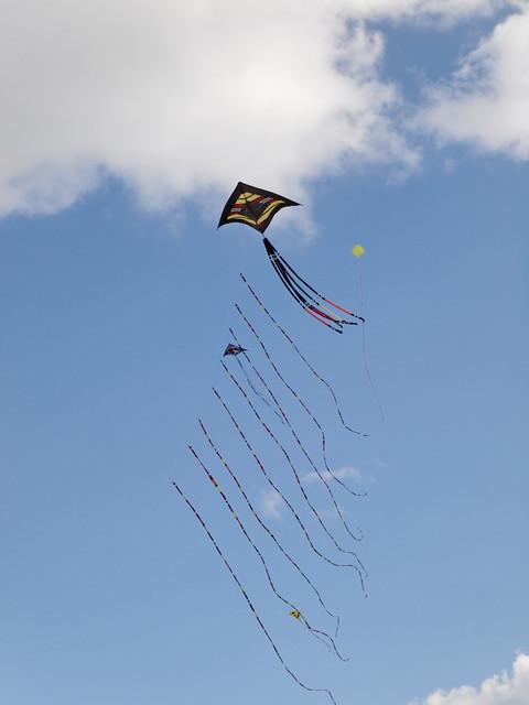 Eggerdon Hill Kite Festival 2010_4