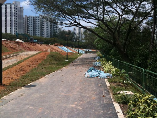 Cycling on a Lazy Saturday Afternoon - Punggol PCN (3/6)