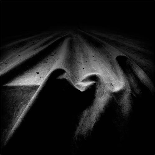 Dark Lines of Life