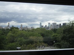 Central Park View From Museum