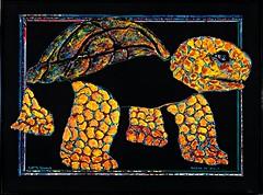 Robert Simons: Tortuga