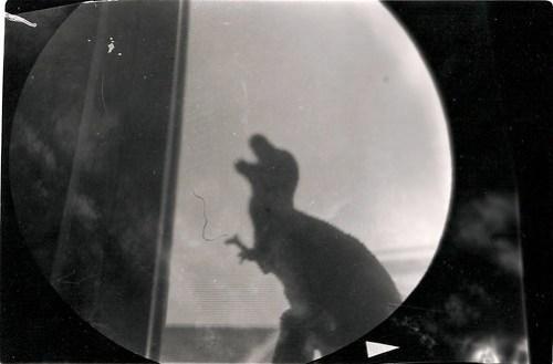 Dinosaur from Kombi Camera