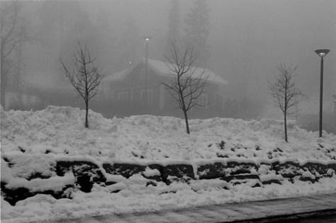 Near Holmenkollen (ski jump), Oslo, Norway