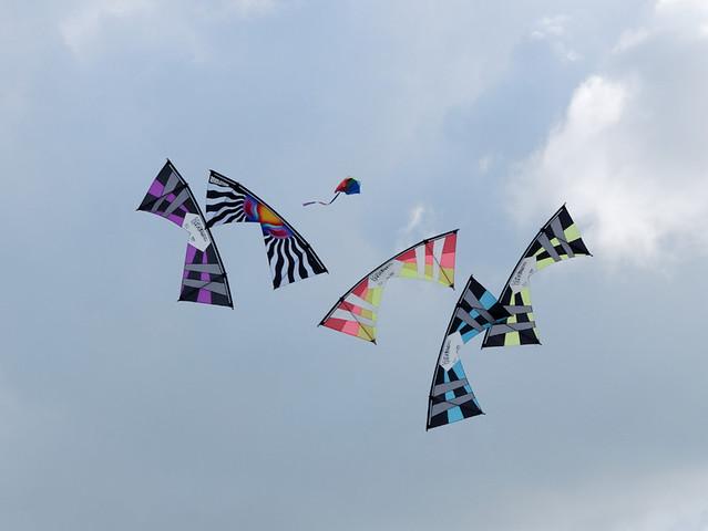 Eggerdon Hill Kite Festival 2010_9