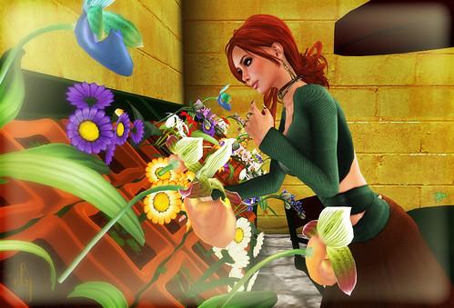 Chosing Flowers
