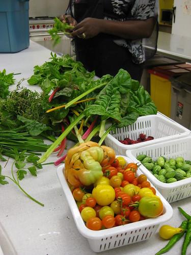School garden produce