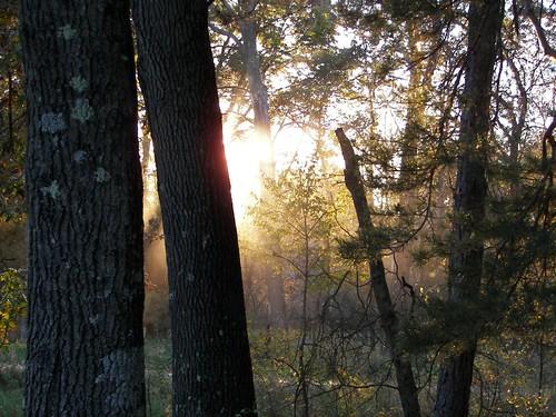 Sunset, Necedah Refuge
